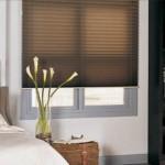 Pleated Shades - Window Treatment & Window Tinting Film